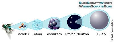 Materie-Aufbau: Elektronen und Quarks sind die kleinsten Einheiten