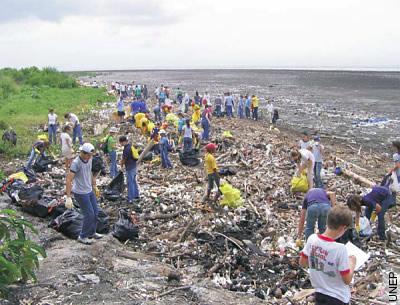 Ozean-Müll sammelt sich an den Küsten