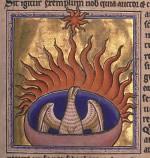 Ein Phönix in den Flammen (Aberdeen Bestiary, 12. Jahrhundert)
