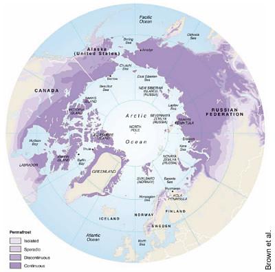 Verteilung der Permafrostböden